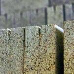 Недорогая тротуарная плитка для дачи в Москве – оптимальный материал для мощения участка