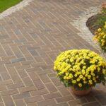 Тротуарная плитка — красота возле вашего дома