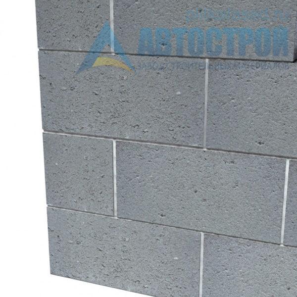 Блок бетонный стеновой КСР-ПР-ПС-39-100-F75-1100 (СКЦ) 290x190x390мм двухпустотный. Пример стены